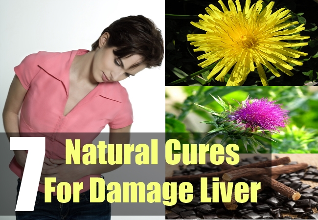 7 Natural Cures For Damage Liver