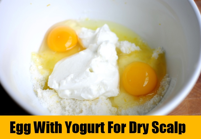 Egg With Yogurt For Dry Scalp