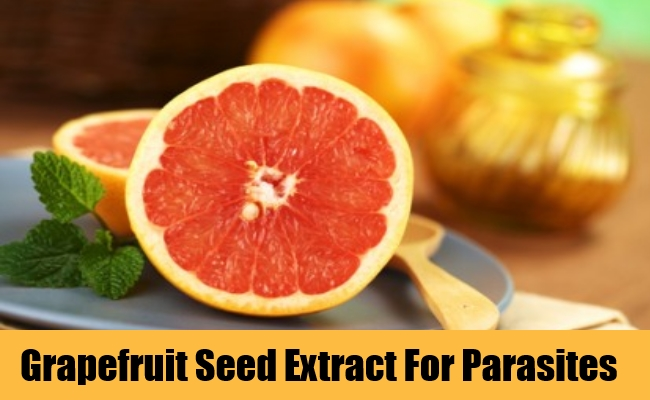 Grapefruit Seed Extract For Parasites