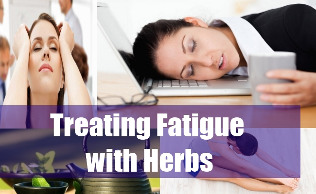 Treating Fatigue with Herbs
