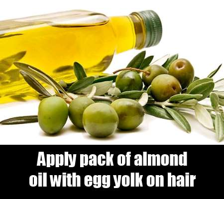 Almond oil or olive oil and egg yolk