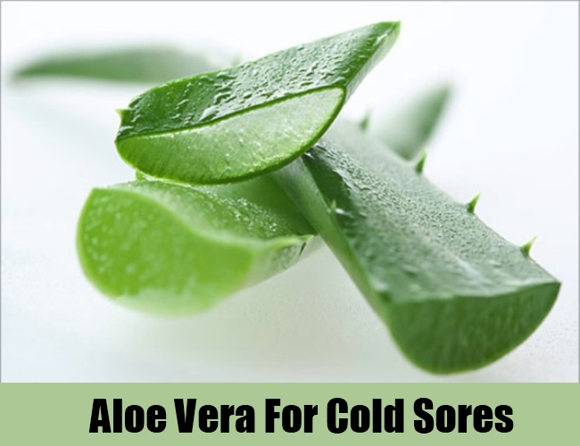 Aloe Vera For Cold Sores