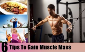 Tips To Gain Muscle Mass