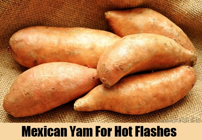 Mexican Yam