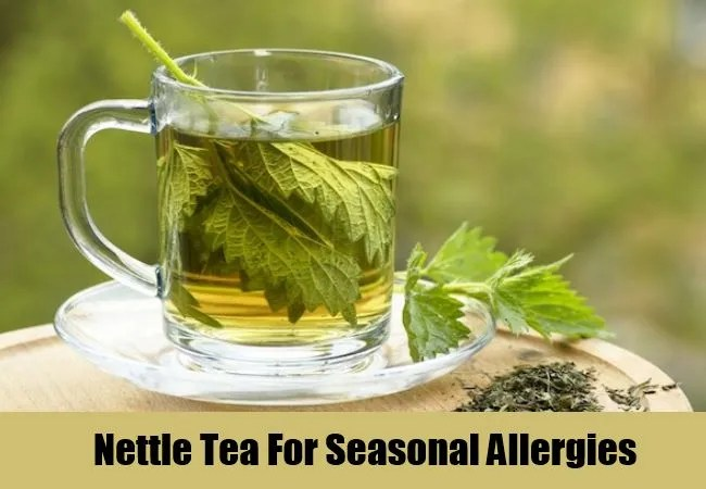 Nettle Tea For Seasonal Allergies
