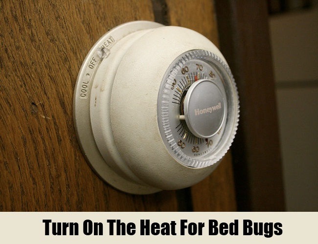 Turn On The Heat For Bed Bugs