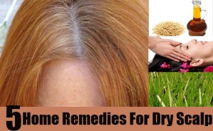 Effective Home Remedies For Dry Scalp