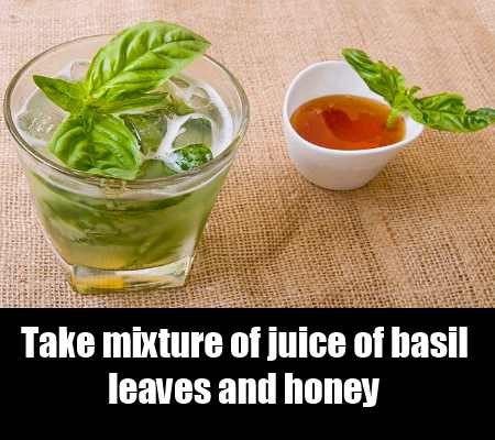 Honey And Basil