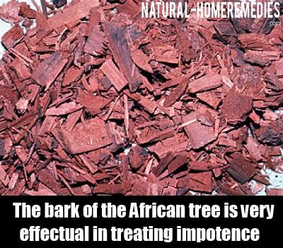 african tree bark