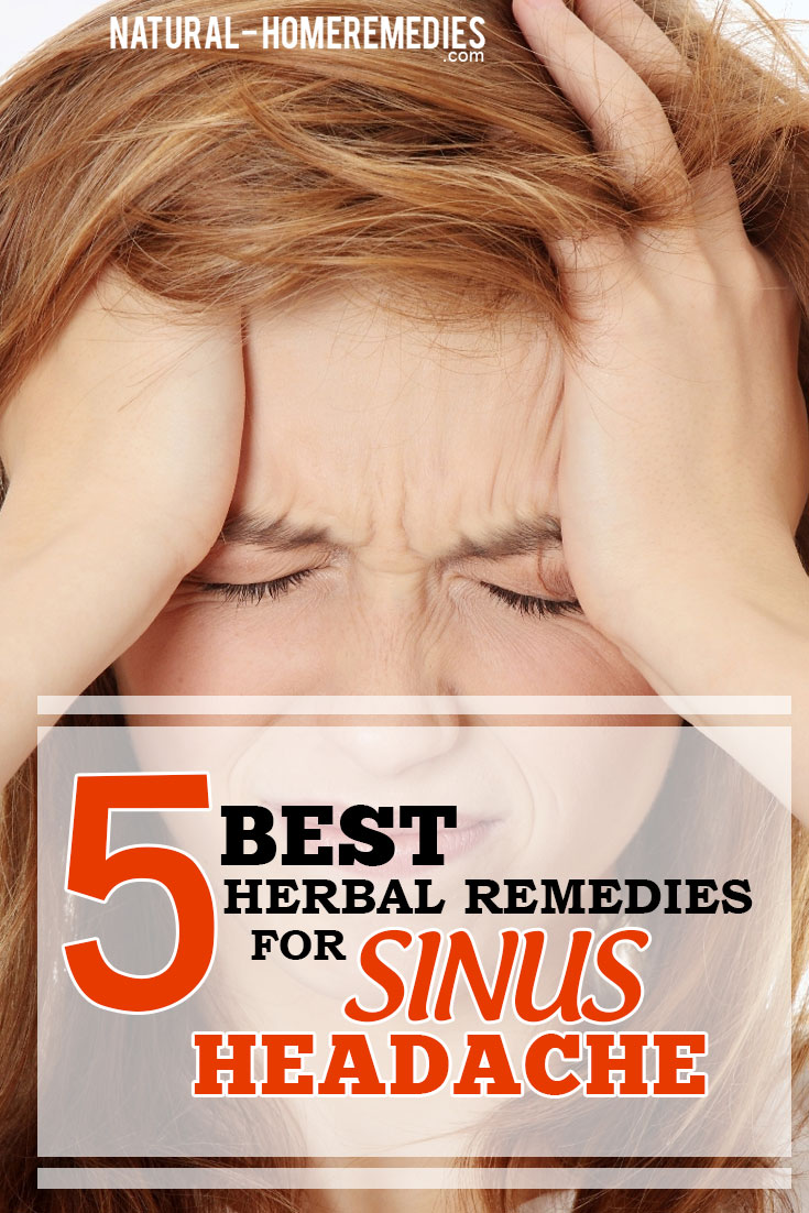 5-Best-Herbal-Remedies-For-Sinus-Headache