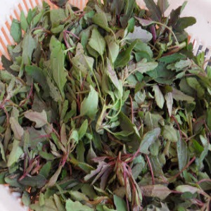 Bathu Leaves