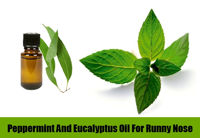 Peppermint And Eucalyptus Oil