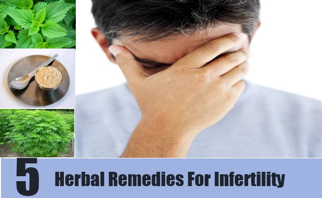 5 Herbal Remedies For Infertility
