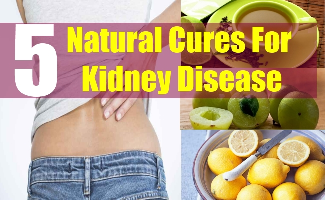 5 Natural Cures For Kidney Disease