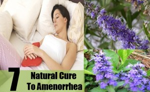 Natural Cure To Amenorrhea