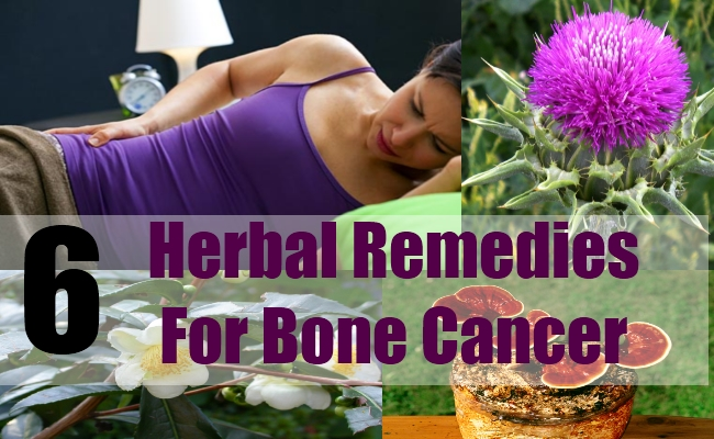 6 Herbal Remedies For Bone Cancer