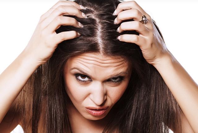 Anti Lice Treatment