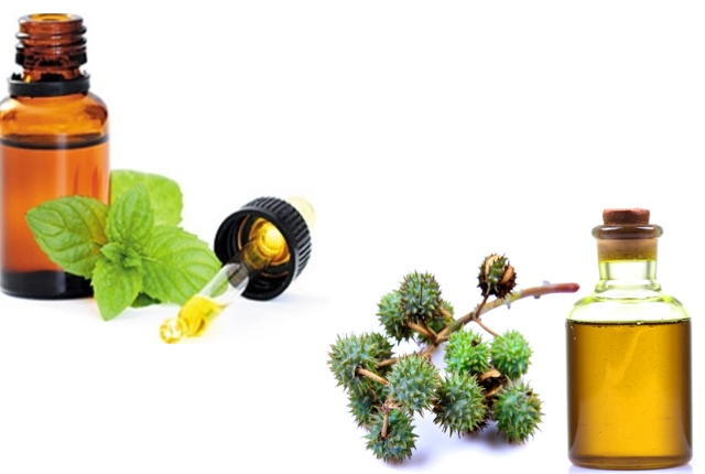 Castor Oil And Peppermint Oil