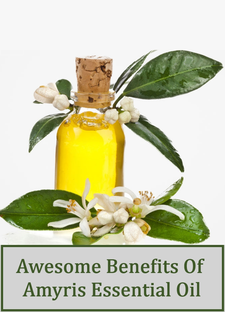 Awesome Benefits Of Amyris Essential Oil