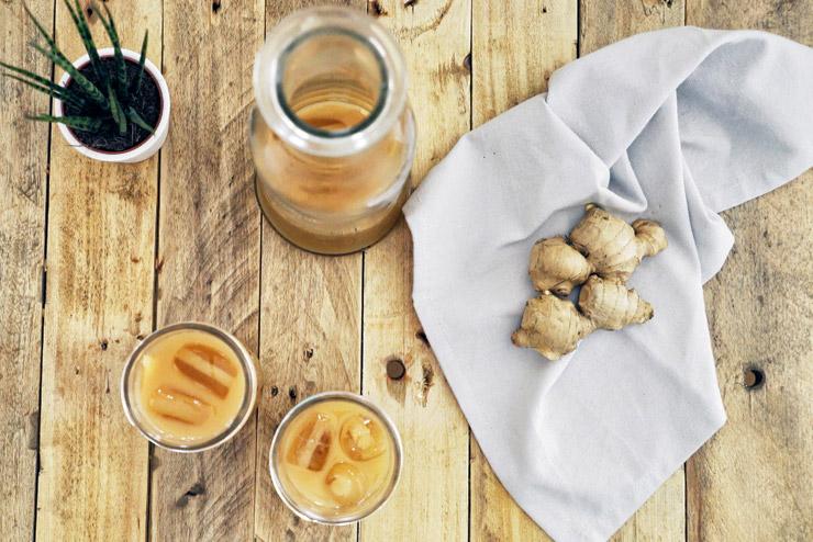 Ingwerspritz - Kombucha mit Ingwer und Zitrone - Scharfer Liebling im Glas