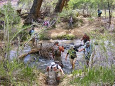 NABS members crossing the Escalante River.
