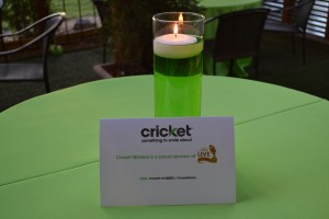 Cricket Nation Private Event