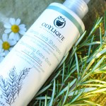 Odylique gentle herb shampoo review