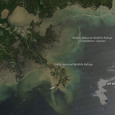 The Gulf Coast Oil Spill: How You Can Help
