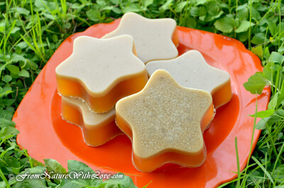 Solid Shampoo Bar for Dogs