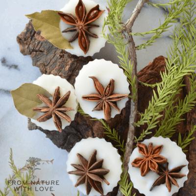 Winter Spice Wax Tarts