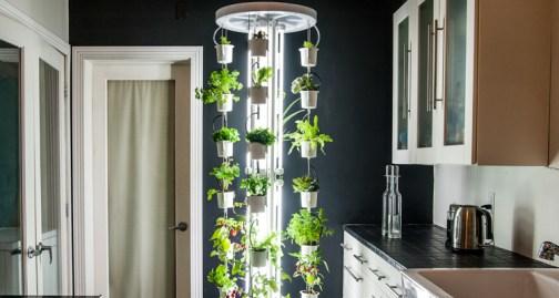1_vertical-farm