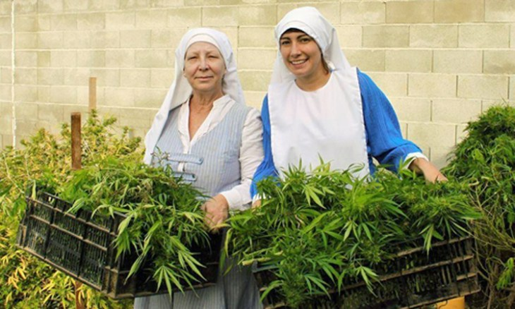 Image result for IMAGES OF HELPING A SISTER WITH MARIJUANA HERB MEDICINE