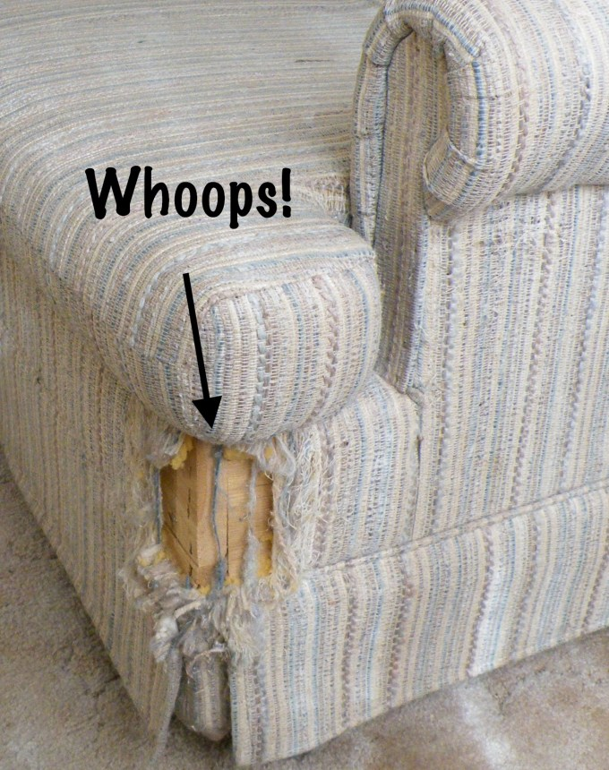 Natural Ways To Keep Cat From Scratching Couch