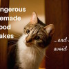 Avoid these homemade catfood mistakes