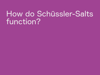 How do Schüssler-Salts function?