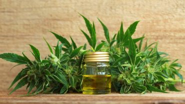 11 Surprising Health Benefits of Cannabis Essential Oil