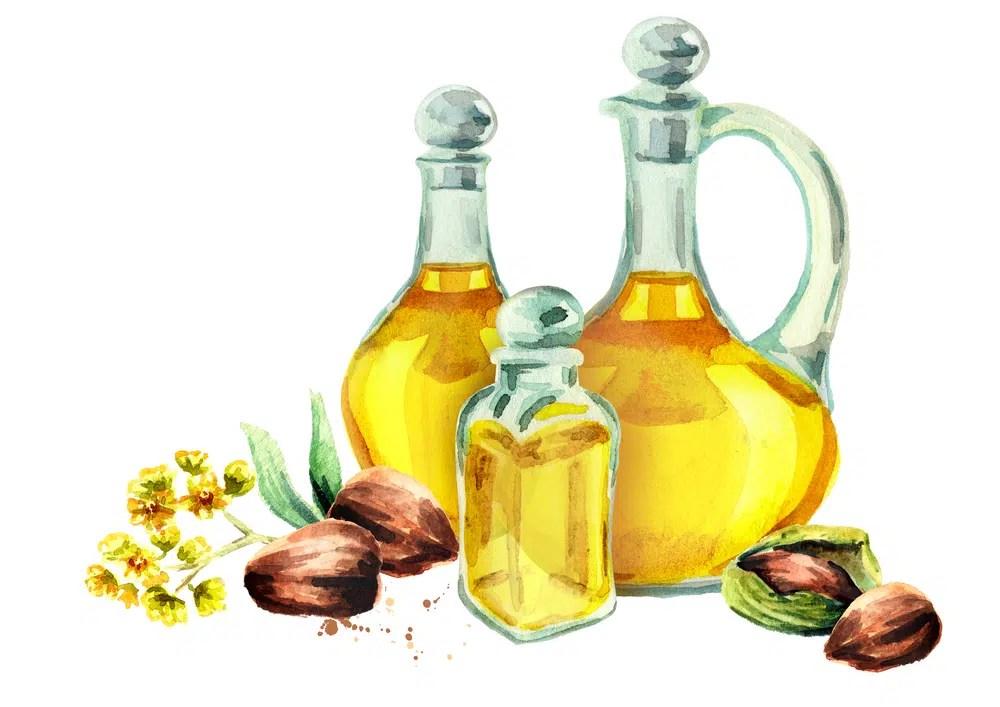Benefícios para saúde surpreendentes do óleo de jojoba