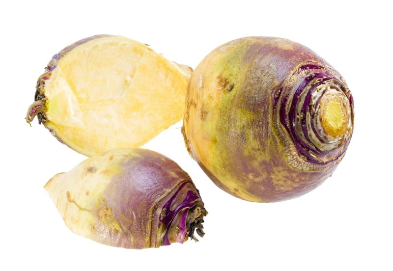 Rutabagas rutabaga root