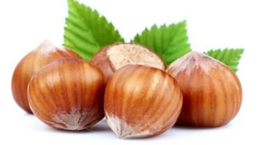 11 Amazing Health Benefits of Hazelnuts