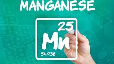 11 Impressive Health Benefits of Manganese