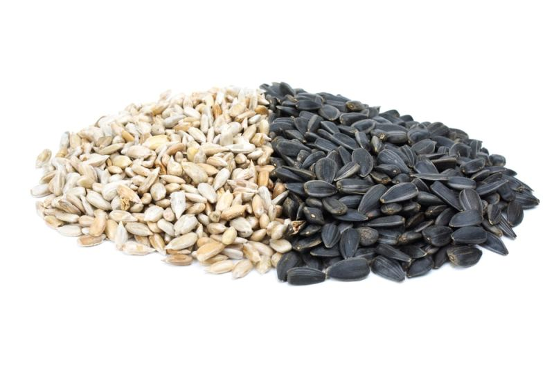 11 Amazing Health Benefits of Sunflower Seeds