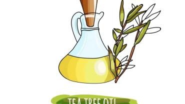 Tea Tree Oil Health benefits