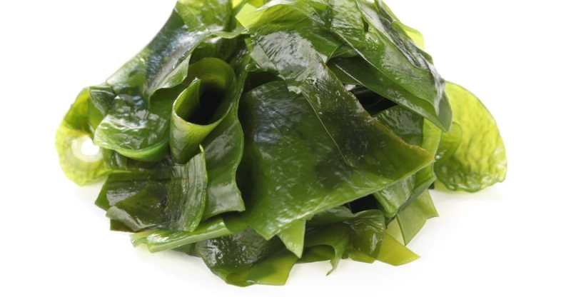 11 Amazing Health Benefits Of Wakame