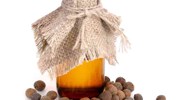 11 Amazing Benefits of Allspice Essential Oil
