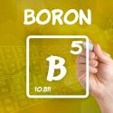 13 Amazing Health Benefits of Boron