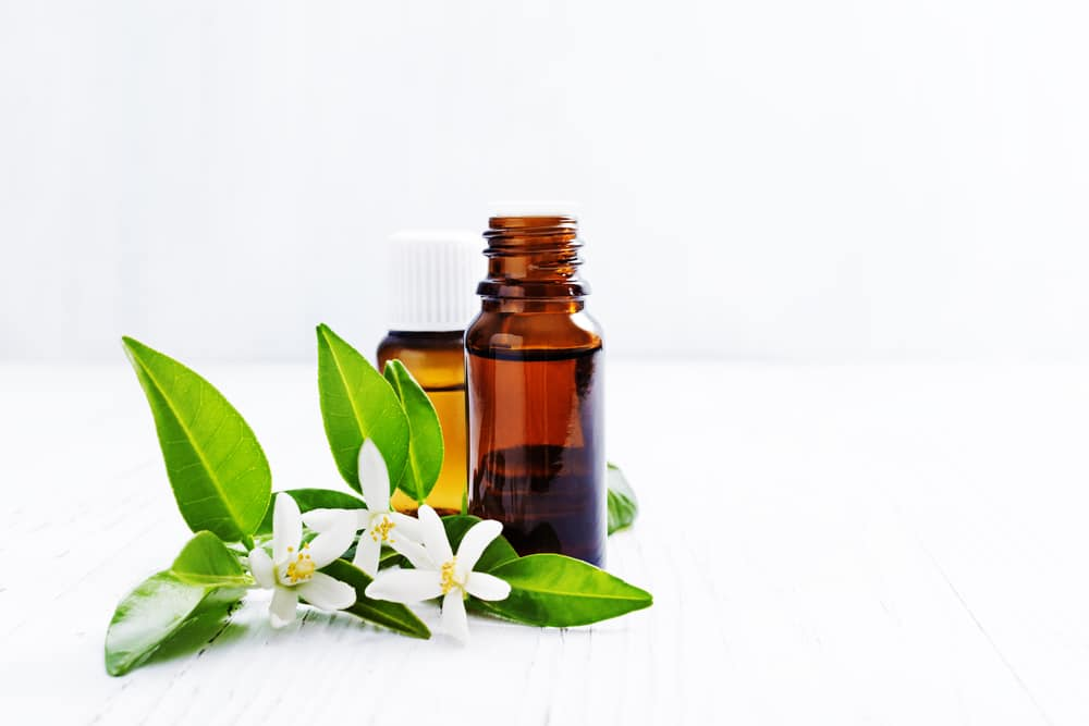 Benefícios surpreendentes para a saúde do óleo essencial de Neroli