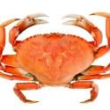 11 Amazing Health Benefits of Eating Crab