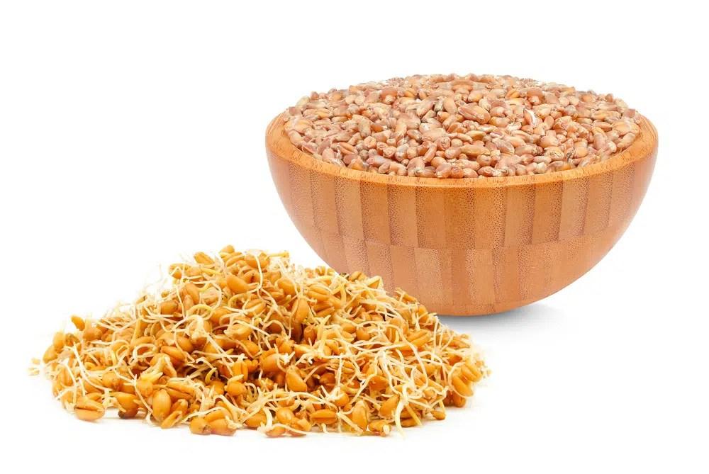 Benefícios à saúde surpreendentes do germe de trigo