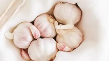 Shocking Reasons To Eat Garlic Every Day