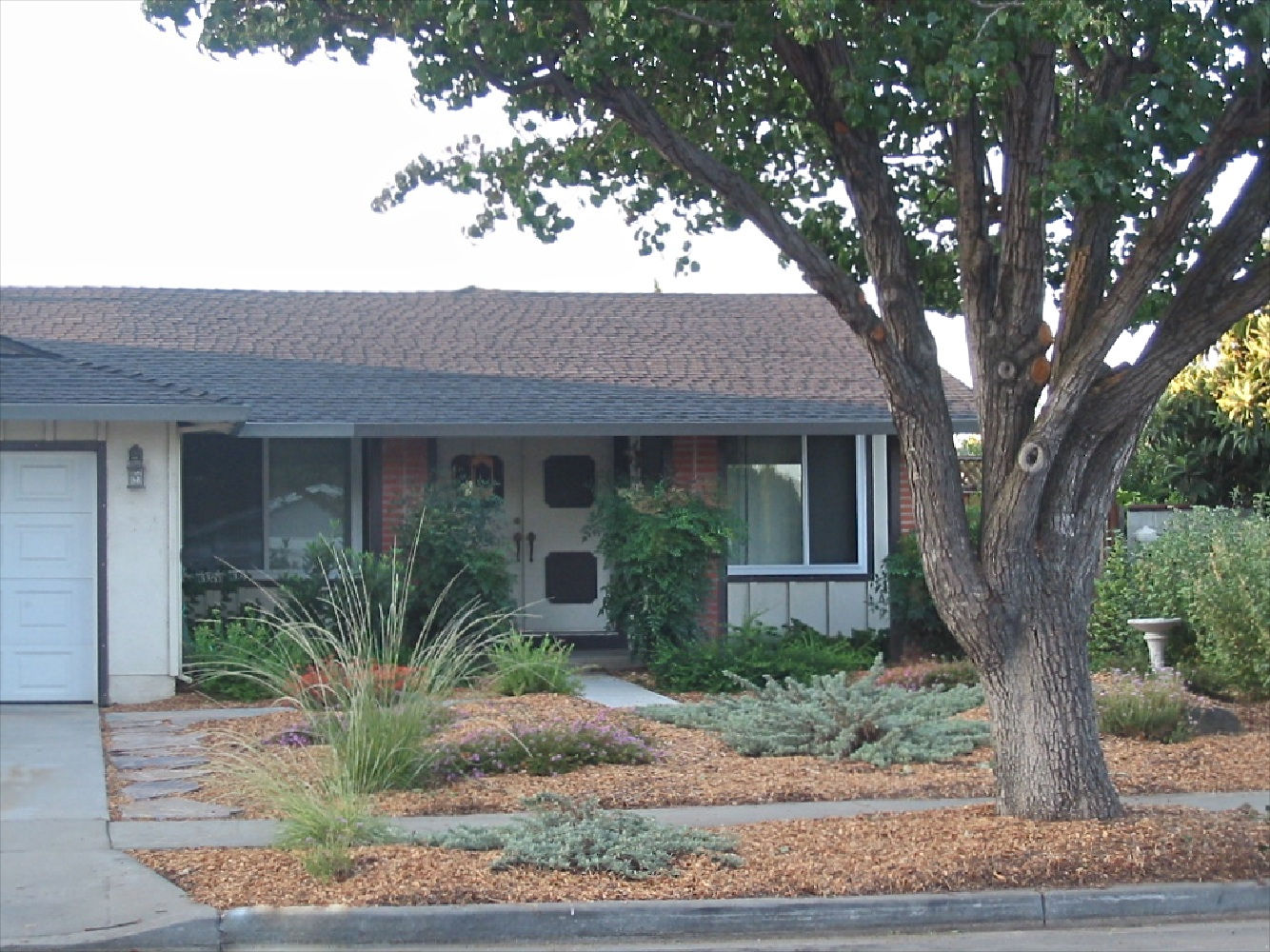 Blog   Natural Front Yards   Sustainable Landscaping